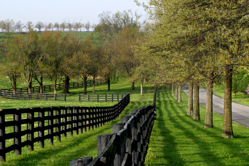 Projects farrow fence